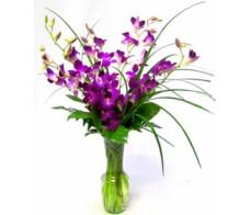 General Flower Arrangements 02