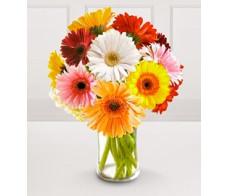 Get Well Birthday Flower Arrangements 03