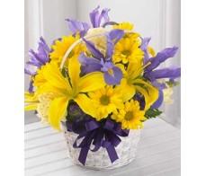 Get Well Birthday Flower Arrangements 05